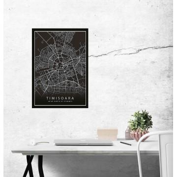 Poster harta Timisoara complet